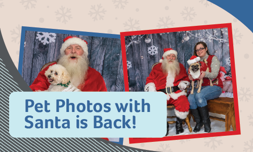 Pet Photos with Santa | Glendale Animal Hospital
