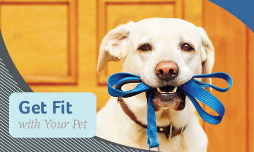 Get Fit with Your Pet | Glendale Animal Hospital