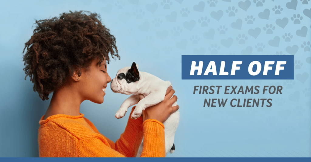 Half Off First Exam for New Clients